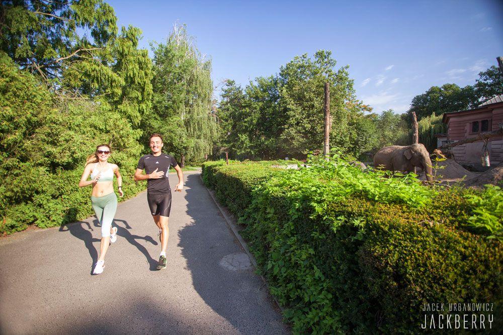 Wild Run Wroclaw bieg po zoo foto Jacek Urbanowicz JackBerry (3)